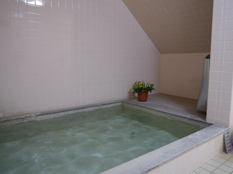 ピステ11/浴室