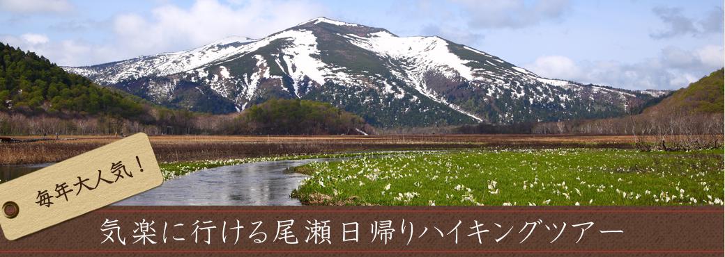 春夏秋~水芭蕉の尾瀬へ~朝発夜発バスツアー