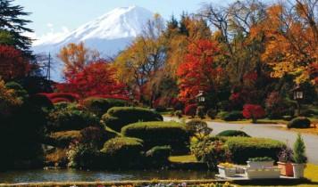 紅葉のスバルライン富士山五合目と富士ビューホテルバイキング&ぶどう狩り