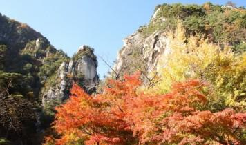 河口湖もみじ回廊・昇仙峡と富士ビューホテルランチバイキング
