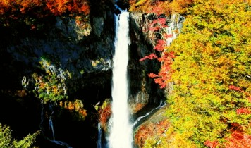 【GoTo】紅葉一番人気!世界遺産日光東照宮と華厳の滝(HT)