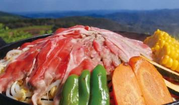 東京ドイツ村&マザー牧場 2つのイルミネーションとジンギスカン食べ放題