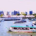 屋形船と桜(イメージ)