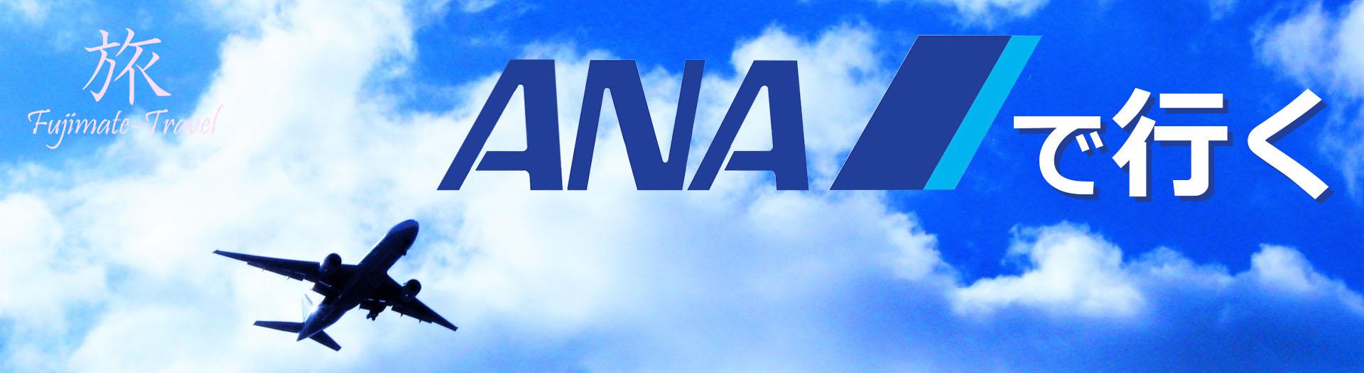 ANAで行く全国ひとっ飛び/ビジネスパック